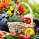 Медики назвали овощ, который способствует профилактике рака