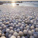 Финский пляж заполонили ледяные яйца