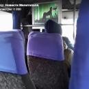 В мелитопольской маршрутке пассажирам показывают секс (видео)