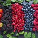 Стало відомо, чому Україна дешево продає овочі та фрукти на експорт