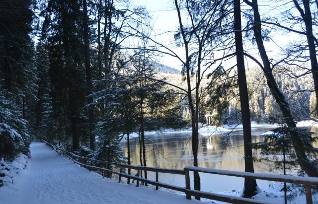 Фото дня: засніжене озеро Синевир
