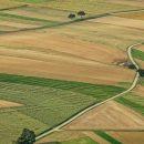 В Украине продлят мораторий на продажу земли, чтобы не допустить аферы