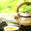 Как употребление зеленого чая может продлить жизнь