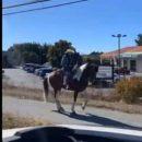 Забавное видео с танцующей лошадью стало хитом в сети