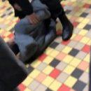 В торговом центре Львова обиженный парень стрелял по людям