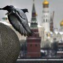 У Кремлі міряють температуру всім, хто контактує з Путіним