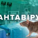 Хантавирус - новая беда, которая страшнее коронавируса: что о ней известно