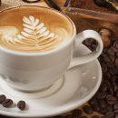 Покупайте продукцию для кофейни именно в нашем интернет-магазине