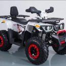 Покупка качественного и недорого квадроцикла от китайского производителя