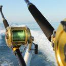 Широкий ассортимент качественной лески для морской рыбалки