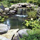 Широкий выбор фильтров для ландшафтных прудов